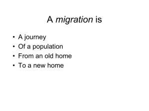 What is it like to MIGRATE?