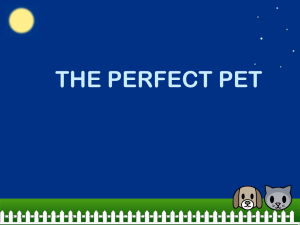 The Perfect Pet PowerPoint