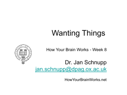 Wanting Things - How Your Brain Works