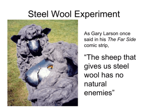 Steel Wool LAB activity