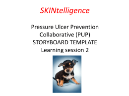 LS2 STORYBOARD TEMPLATE_SKINtelligence PUP collaborative