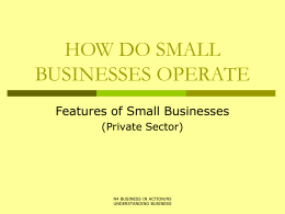 5. Features of small businesses – private sector