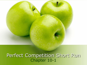 Perfect Competition Short Run