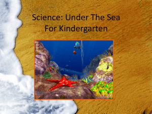 Science: Under The Sea For Kindergarten