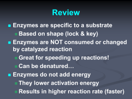 Enzyme Regulation/Rates PPT