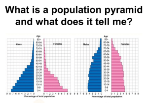 What is a population pyramid and what does it tell