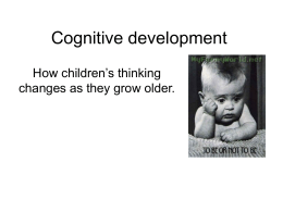 Cognitive Development Revision