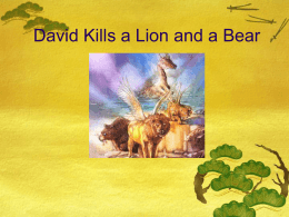 David Kills a Lion and a Bear