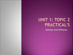Unit 1: Topic 2 Practical`s