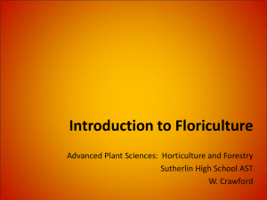 Introduction to Floriculture - Flower Industry