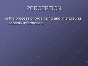 PERCEPTION Powerpoint