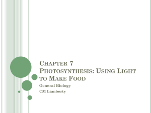 Chapter 7 Photosynthesis_student version