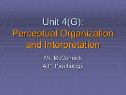 A.P. Psychology 4 (G) - Perceptual Organization and Interpretation