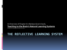 The Reflective Learning System