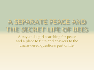 A Separate Peace and The Secret Life of Bees