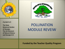 Pollination Module Introduction - Garden Earth Naturalist Homepage