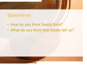 PowerPoint for the Fossil Notes