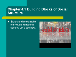 Chapter 4.1 Building Blocks of Social Structure