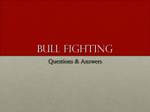 Bull Fighting Study Guide Power Point