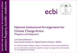 National Institutional Arrangements for Climate Change Action
