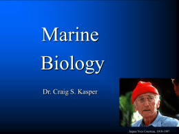 What is Marine Biology?