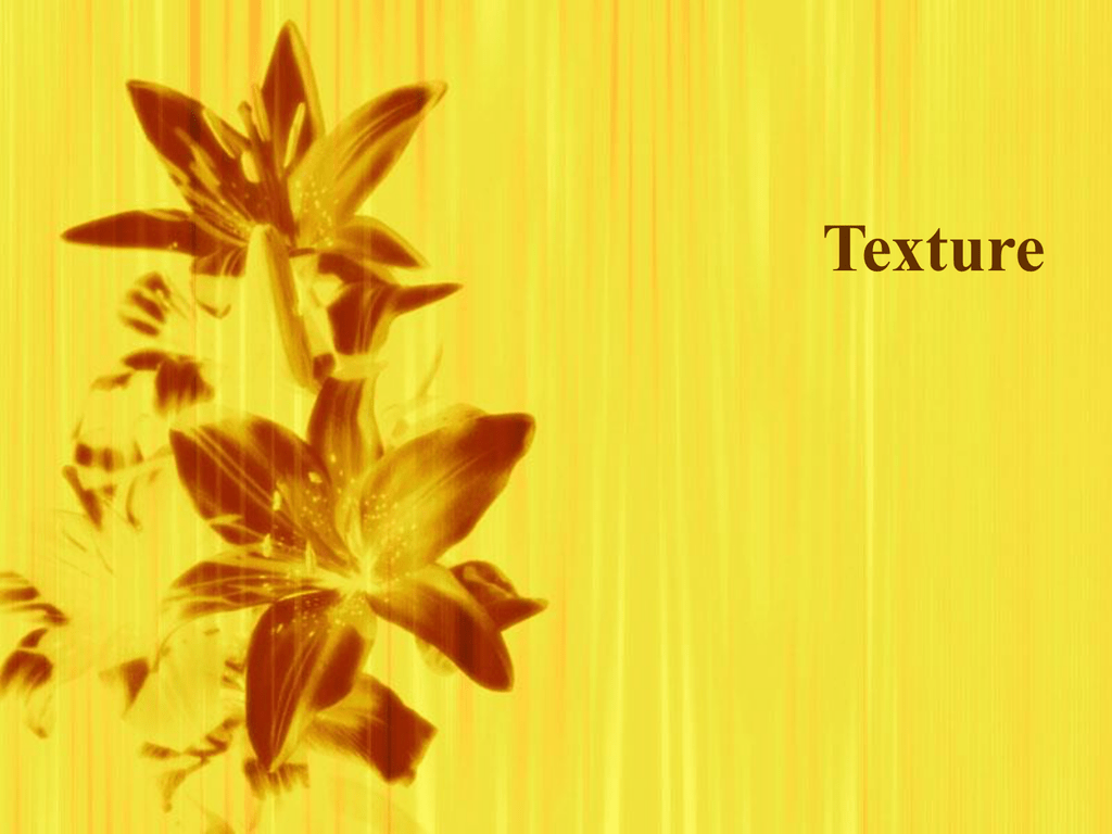 Chapter 7 Texture