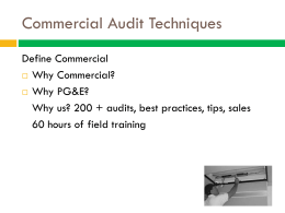Commercial Audit Techniques