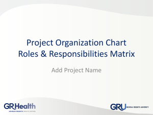 Project Organization Chart & Roles