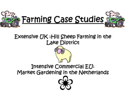 Farming Case Studies Extensive UK :Hill Sheep Farming in the Lake