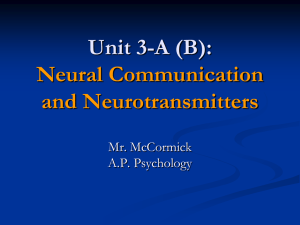 Neural Communication and Neurotransmitters