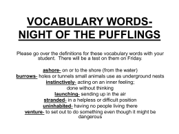VOCABULARY WORDS-NIGHT OF THE PUFFLINGS