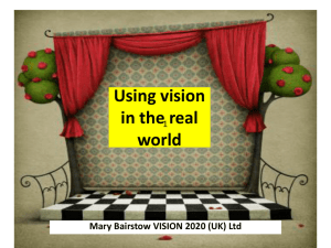Using vision in the real world (Powerpoint, 1.1 MB)