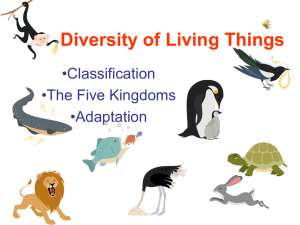 Diversity of Living Things