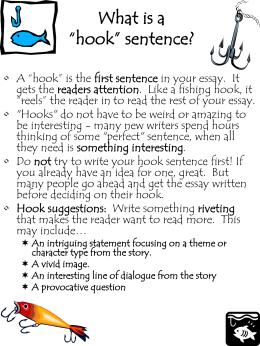 Ac indoor net essay