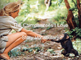The Chimpanzees I Love Vocabulary