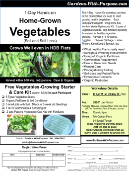 flyer_Vegetable_1Day2015 - Copy