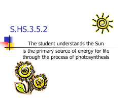 3.5.2: Photosynthesis