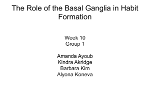 The Role of the Basal Ganglia in Habit Formation