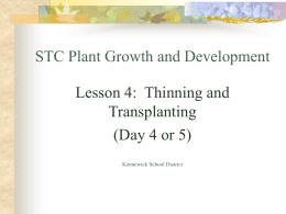 STC Plant Growth and Development Lesson 4