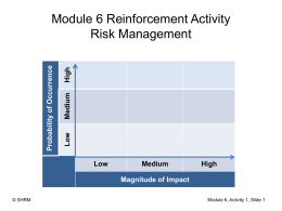 Module 6 Reinforcement Activity Risk Management