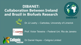Collaboration Between Ireland and Brazil in Biofuels Research