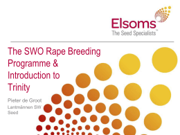 The SWO Oilseed Rape Breeding Programme and