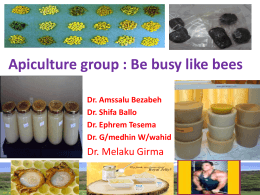 Group work apiculture - LIVES