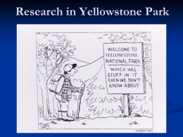 Research in Yellowstone Park 2010 - C. Hendrix