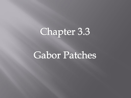 Gabor Patches are presented through Gaussian windows