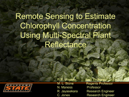 Remote Sensing to Estimate Chlorophyll Concentration Using Multi