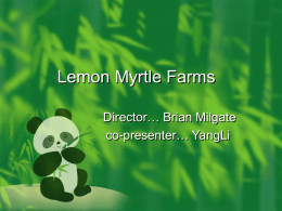 Lemon Myrtle Farms - Australia China Trade & Investment