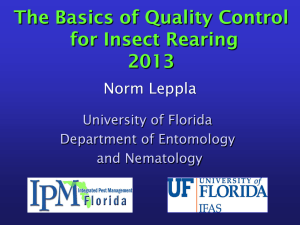 The Basics of Quality Control for Insect Rearing