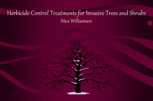 Herbicide Control Treatments for Invasive Trees and