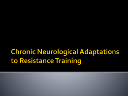 Chronic Neurological Adaptations to High Intensity Resistance